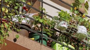 balkon poslije4