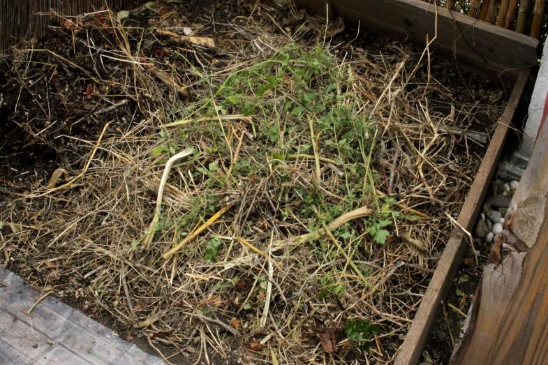 kompost5