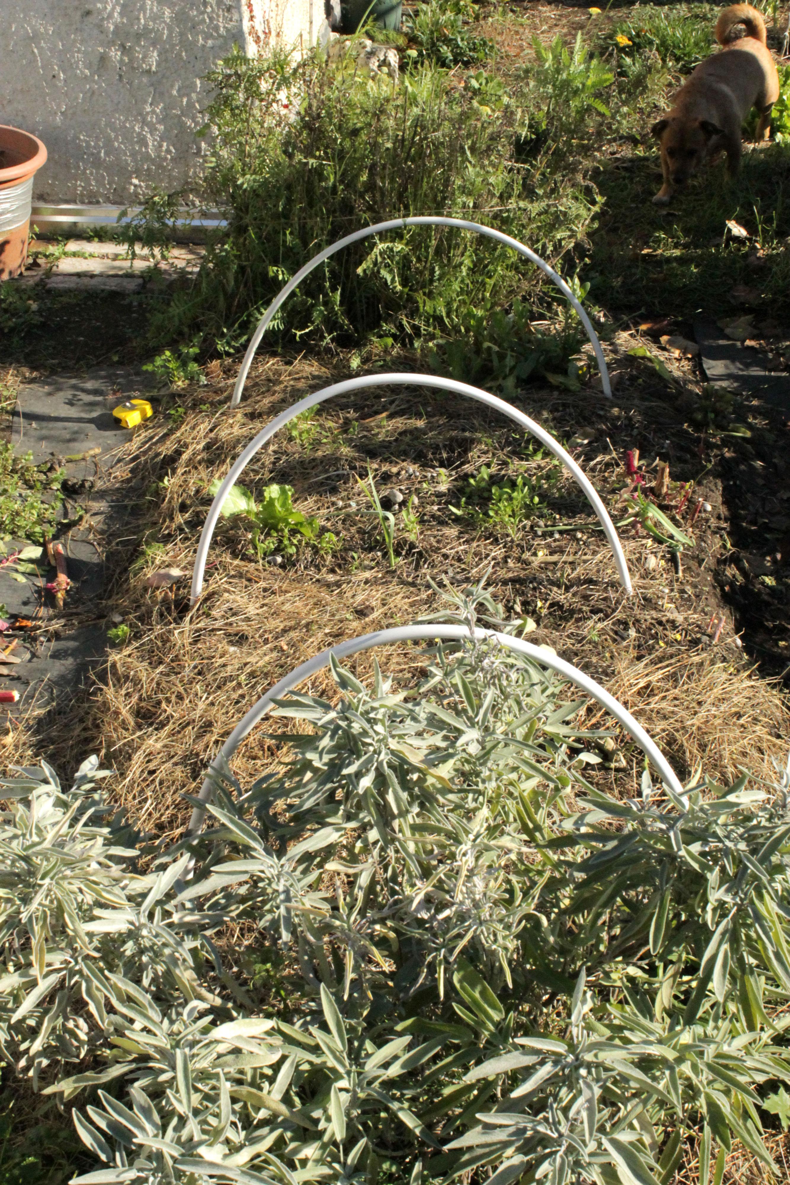 Priprema za zimski san - Urbana vrtlarka